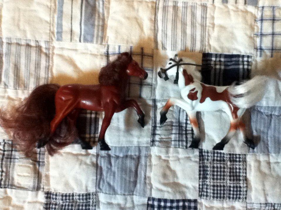 Kid Kore Mini Horses