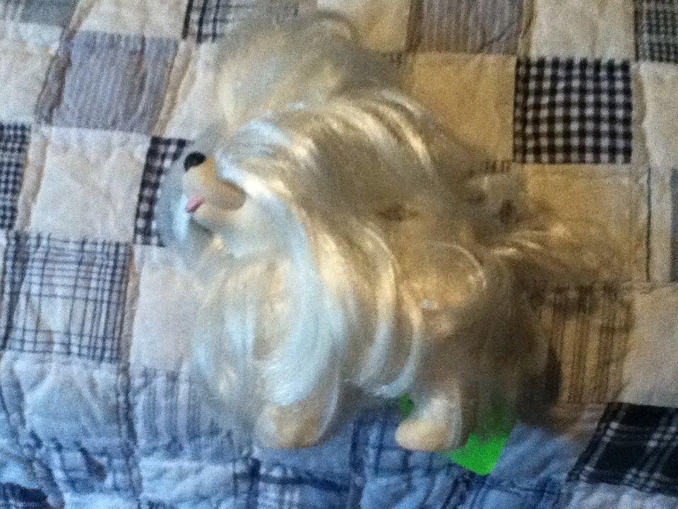 Sweetie Pup White