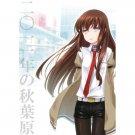 STEINS;GATE DOUJINSHI / 2011 Nen no Akihabara / Okabe x Kurisu