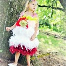 Feather Fiesta Dress splashy and playful. Any size available Your color choices