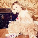 My Little Princess Pettiromper Dress photos parties pageants special occasions