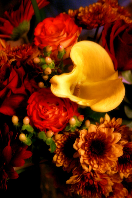 Summer Flower Boquet Fine Art Photo 8x10