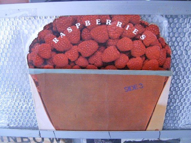 RASPBERRIES raspberries LP 1973 ROCK**