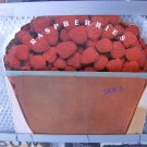 RASPBERRIES raspberries LP 1973 ROCK**