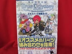 GUNDAM True Odyssey expart guide book / Playstation 2,PS2