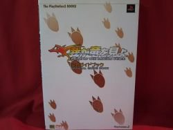 Pride of the Dragon Peace official guide book / Playstation 2, PS2