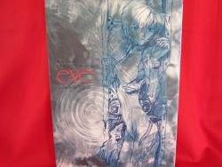 "Evangelion ""eve"" just women photo file art book"