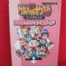 Harvest Moon professional guide book /Playstation, PS1