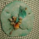 Sand Dollar Plaque (light turquoise)