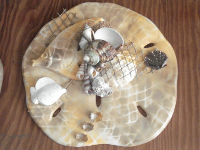 Sand Dollar Wall Plaque Tan w/ Large Fish Accent