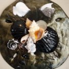 Sand Dollar Wall Plaque Black/Gold with White Fish