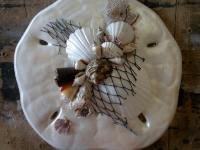 Sand Dollar Wall Plaque Pearl White
