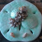 Sand Dollar Plaque Teal