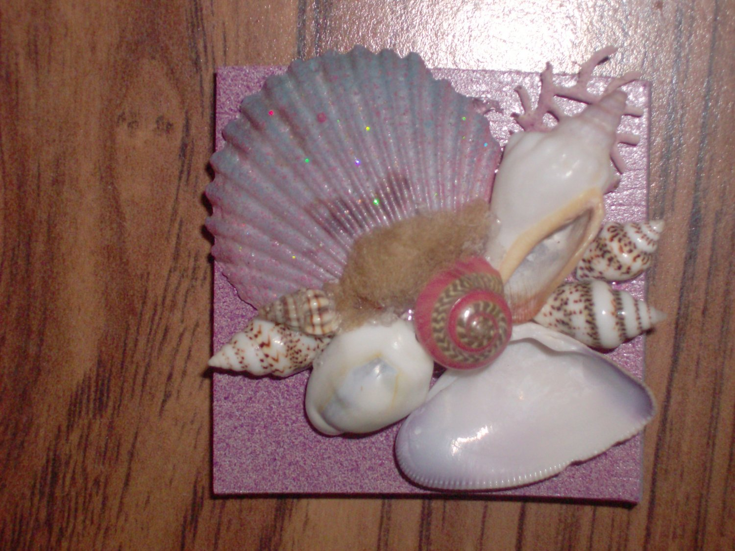 Magnet Pink with pink accent shells and seafan