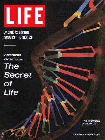 Life October 4 1968