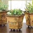 Safari Pots