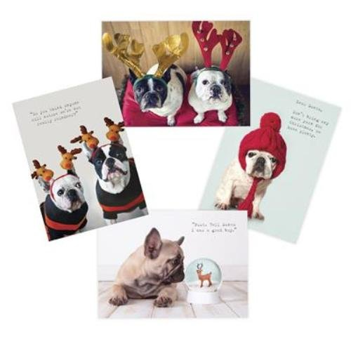 "Pawparazzi Bulldog Boxed Christmas Cards & Envelopes Holographic Foil 4"" x 6"""