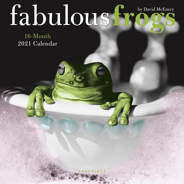 "FABULOUS FROGS by David McEnery 16 Month 2021 Mini CALENDAR ART 7"" x 7"" New!"