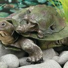 Turtles Garden Yard Decor
