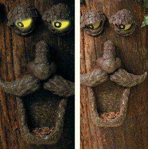 Tree Face Bird Feeder