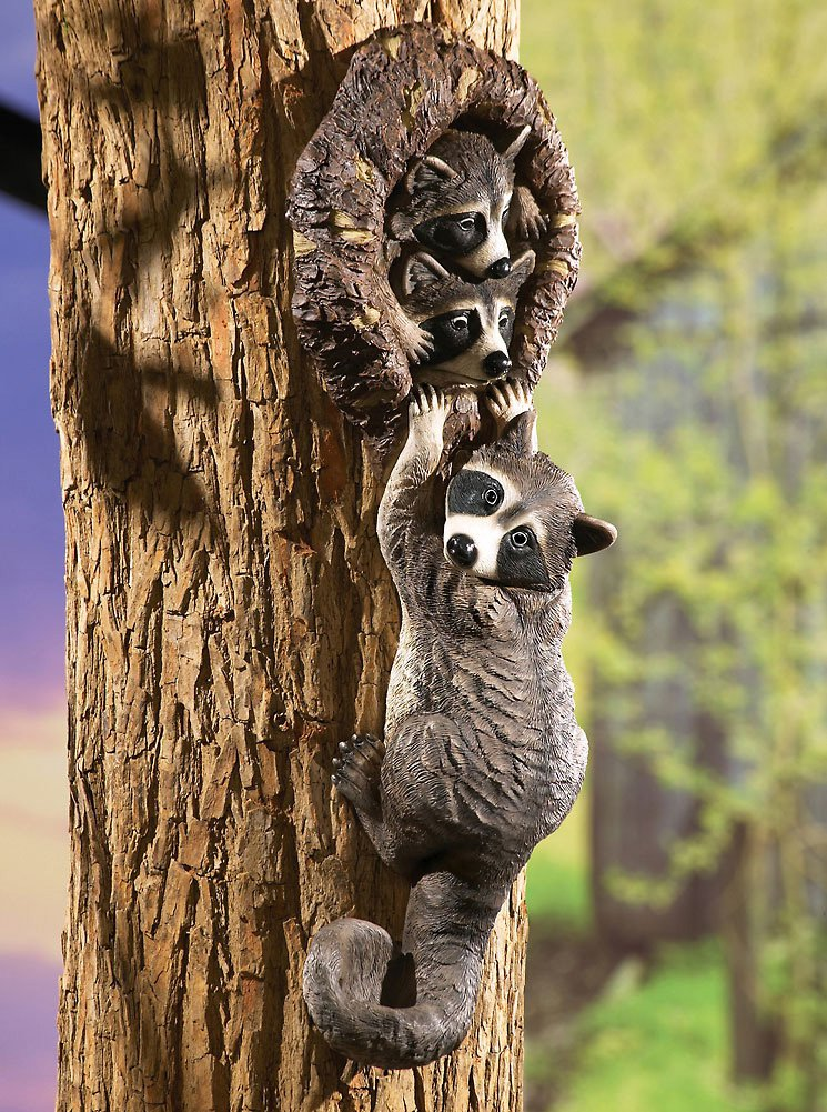 Peeping Raccoons Tree Decor