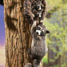 Peeping Raccoons Tree Decor