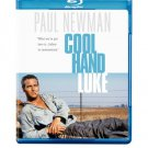 Cool Hand Luke [Blu-ray] starring Paul Newman