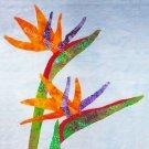 "Tropical BIRD Of PARADISE Flowers~10.5"" Organic Cotton Sateen Fabric Quilt Panel Block~Hawaiian"