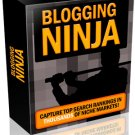 Blogging Ninja.