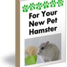 Caring for your New Pet Hamster