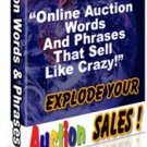 1,079 Online Auction Words And Phrases That Sell Like CRAZY!