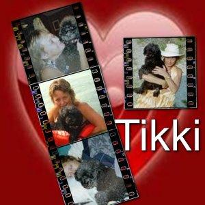 Animals Tikki 8.5 x 8.5