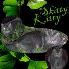 Animals Skitty 8.5 x 8.5