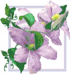Lavender Clematis and Bud Pattern Chart Graph