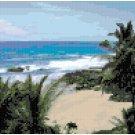 Beach Hideaway Seascape Pattern Chart Graph