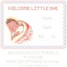 Baby Girl Birth Record Pattern Chart Graph