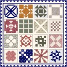 Dear Jane Quilt by Jane Stickle 1863 Pattern Chart Graph