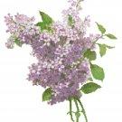 Lilac Blossoms 2 Pattern Chart Graph
