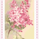 Old Fashioned Pink Lilacs Pattern Chart Graph