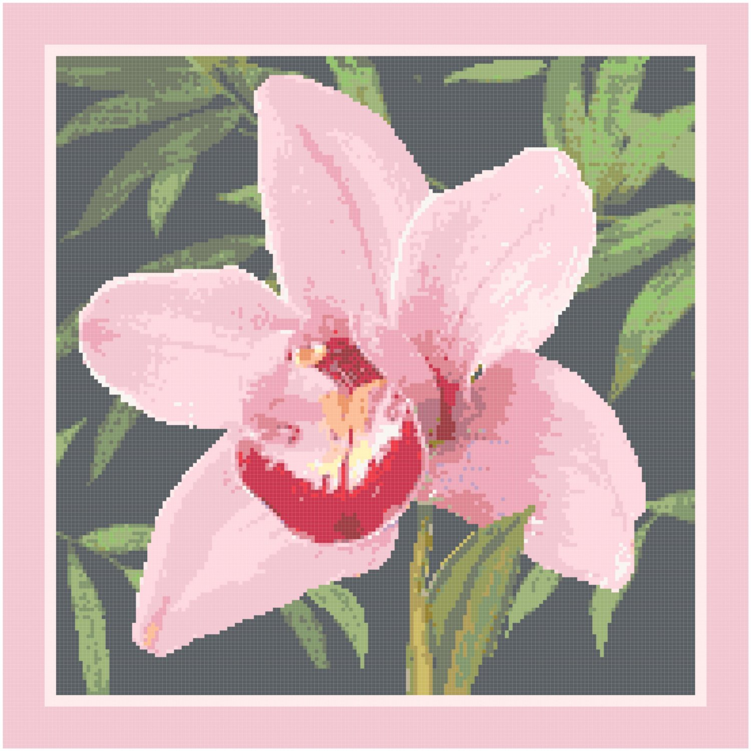 Orchid Pattern Chart Graph