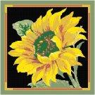 Sunflower Pattern Chart Graph