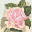 Pink Parfait Rose Pattern Chart Graph