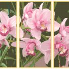 Gorgeous Orchids Triptych Pattern Chart Graph
