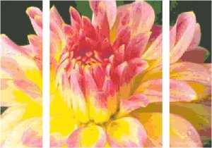 In Full Blush Triptych Pattern Chart Graph