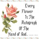 God's Autograph Pattern Chart Graph