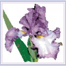 Royal Purple Iris Pattern Chart Graph