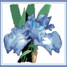 Royal Blue Iris Pattern Chart Graph