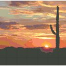 Desert Sunset Landscape Pattern Chart Graph