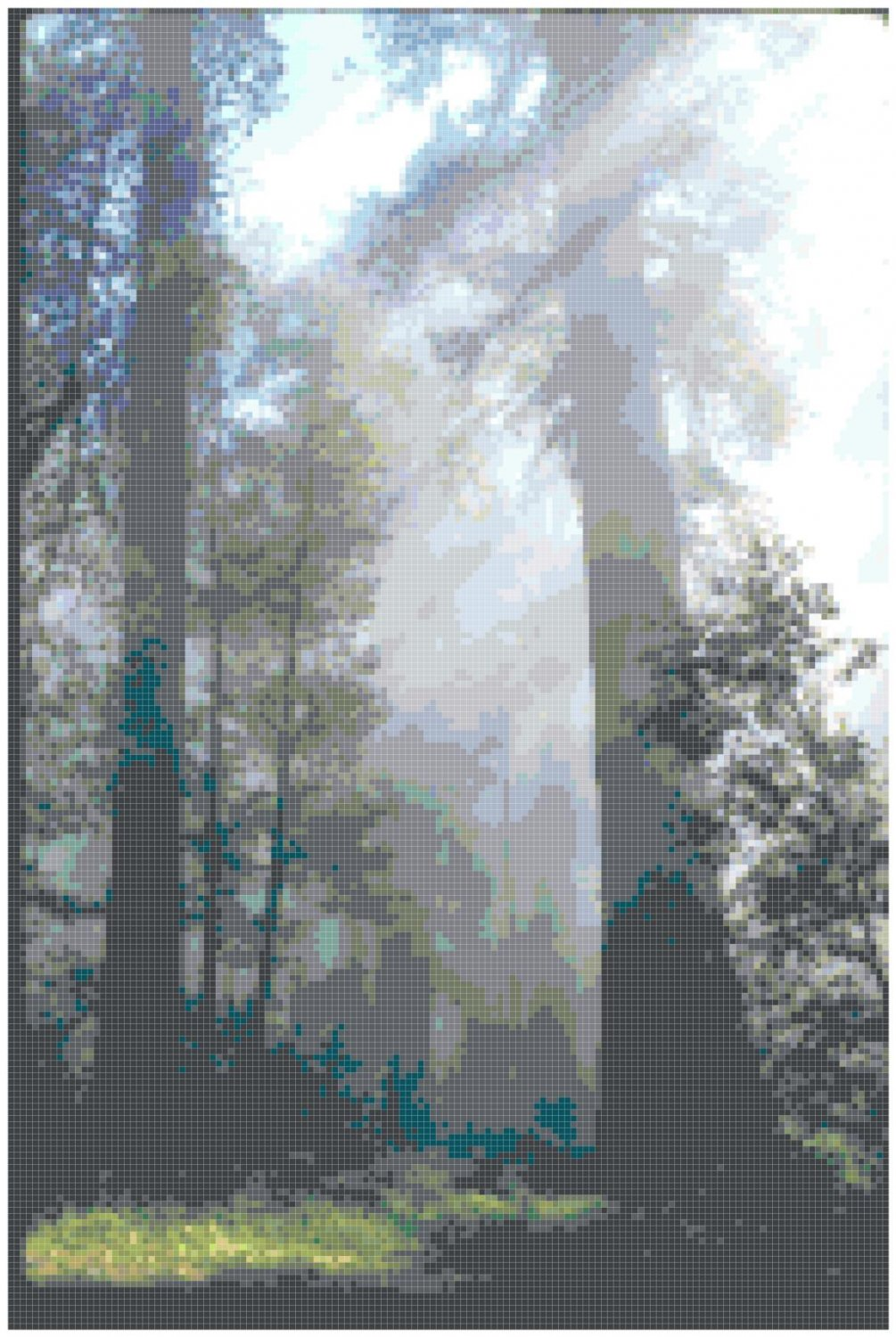 Sunbeams in the Forest Landscape Pattern Chart Graph