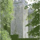 Bunratty Castle - Ireland Landscape Pattern Chart Graph